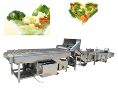 vegetable washing and cleaning machine